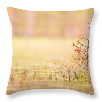 Peaceful Throw Pillow by Janne Mankinen