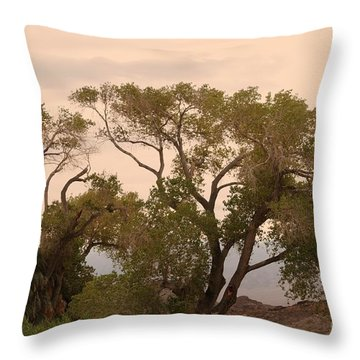 Peaceful Throw Pillow by Kathleen Struckle