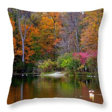 Peaceful Lake Throw Pillow