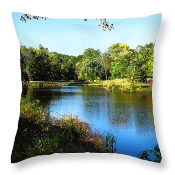 Peaceful Lake Throw Pillow by Susan Savad