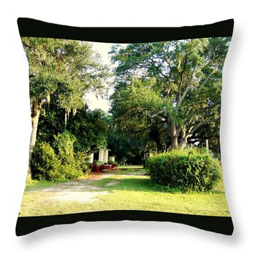 Peaceful Morning Throw Pillow by Catherine Gagne