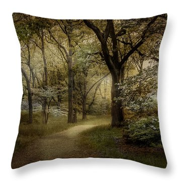 Peaceful Passage Throw Pillow by Robin-Lee Vieira