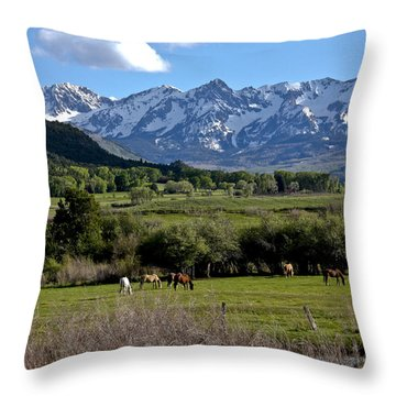Peaceful Pastures Throw Pillow by Marta Alfred