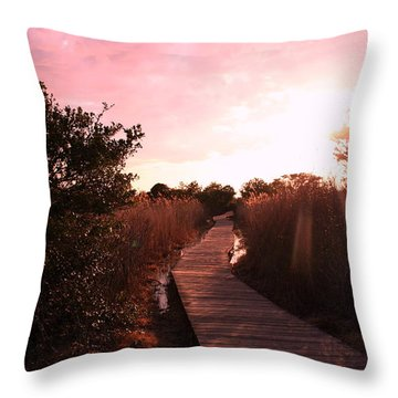 Throw Pillow featuring the photograph Peaceful Path by Karen Silvestri