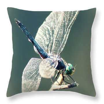 Peaceful Pause Throw Pillow by Melanie Lankford Photography
