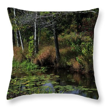 Peaceful Pond Throw Pillow by Karol Livote