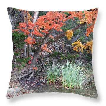 Peaceful Retreat Lost Maples Texas Hill Country Throw Pillow by Silvio Ligutti