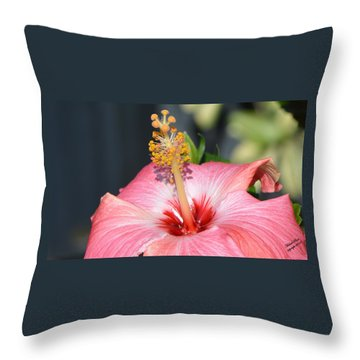 Peaceful Tingles - Signed Throw Pillow
