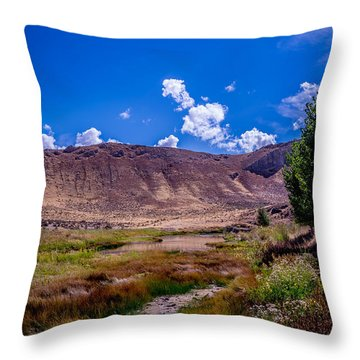 Peaceful Valley II Throw Pillow