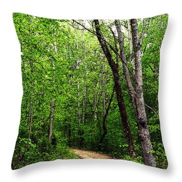 Peaceful Walk Throw Pillow