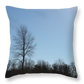 Throw Pillow featuring the photograph Peaceful Winter Scene by Anita Oakley