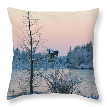 Throw Pillow featuring the photograph Peaceful Winters Morn by Beth Sawickie