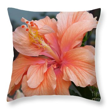 Throw Pillow featuring the photograph Peach And Cream by Lingfai Leung