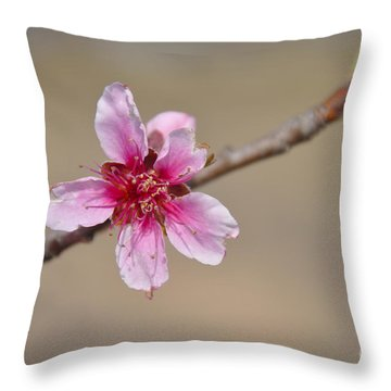 Peach Blossom Throw Pillow by Cheryl McClure