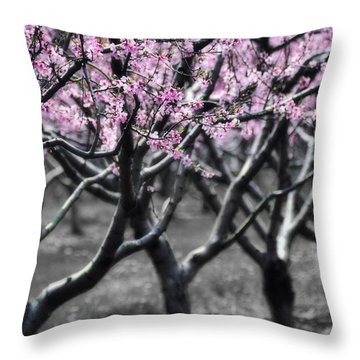 Cotton Candy Throw Pillow
