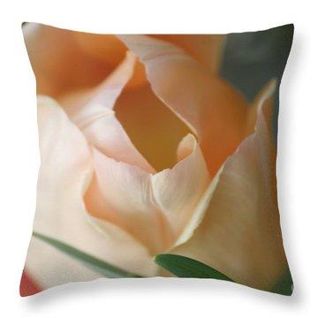 Throw Pillow featuring the photograph Peach Harmony by Mary Lou Chmura