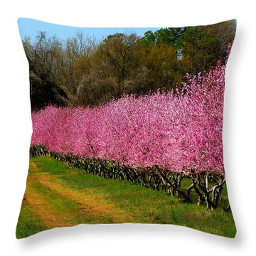 Throw Pillow featuring the photograph Peach Orchard In Carolina by Lydia Holly