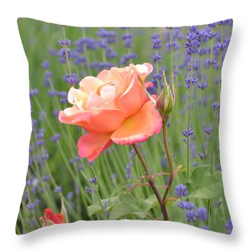 Peach Roses In A Lavender Field Of Flowers Throw Pillow