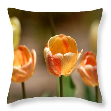 Peaches And Cream Throw Pillow by Living Color Photography Lorraine Lynch