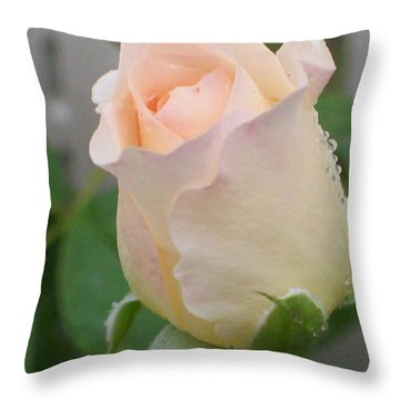 Throw Pillow featuring the photograph Fragile Peach Rose Bud by Belinda Lee