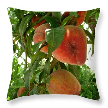 Throw Pillow featuring the photograph Peaches On The Tree by Kerri Mortenson
