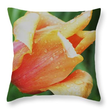 Peachy Throw Pillow by Bill Woodstock