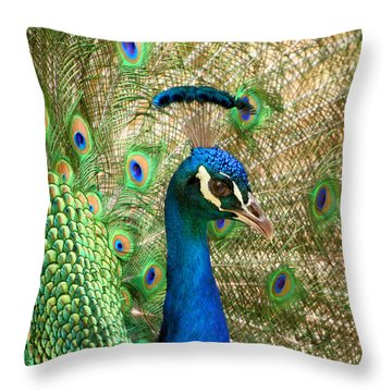 Throw Pillow featuring the photograph Peacock 1 by Bob and Jan Shriner