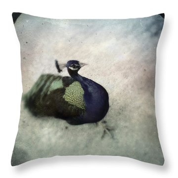 Throw Pillow featuring the photograph Peacock by Bradley R Youngberg