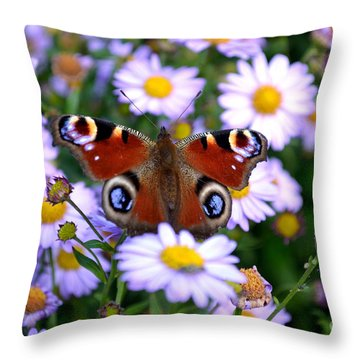 Peacock Butterfly Perched On The Daisies Throw Pillow by Scott Lyons