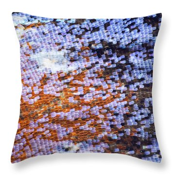 Peacock Butterfly Wing Scale Detail Throw Pillow