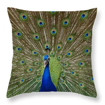 Peacock Throw Pillow by Ernie Echols