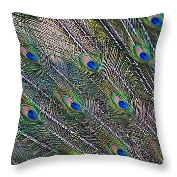 Peacock Feathers Abstract Throw Pillow by Eti Reid