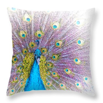Peacock Throw Pillow by Holly Kempe