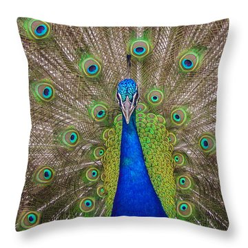 Throw Pillow featuring the photograph Peacock by Leigh Anne Meeks