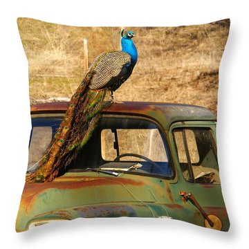 Peacock On Old Gmc Truck 3 Throw Pillow by Loni Collins