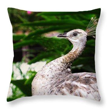 Peacock Portrait Throw Pillow by Ella Kaye Dickey