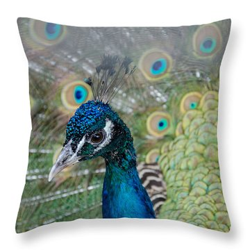 Peacock Portrait Throw Pillow