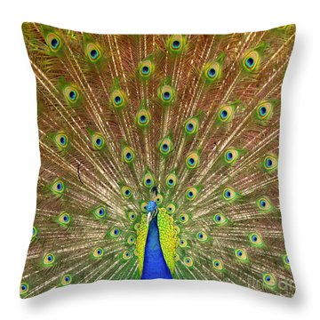 Throw Pillow featuring the photograph Peacock Proud by Myrna Bradshaw