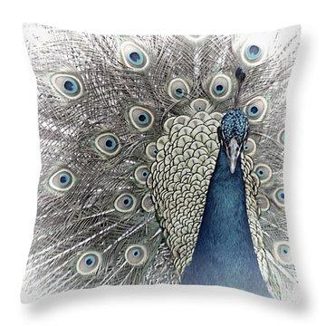 Peacock Square Throw Pillow
