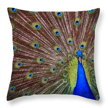 Throw Pillow featuring the photograph Peacock Squared by Jaki Miller