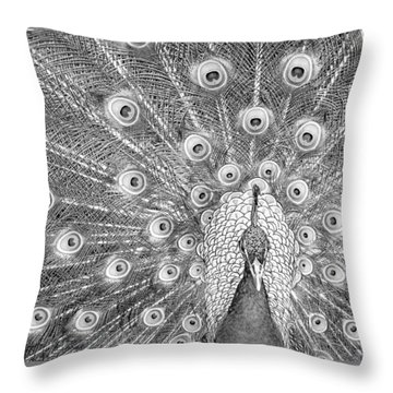 Peacock Strut Throw Pillow