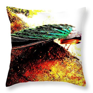 Throw Pillow featuring the photograph Peacock Tail by Vanessa Palomino