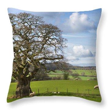Peak District Tree Throw Pillow