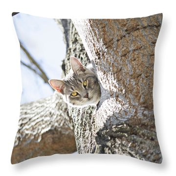 Peaking Cat Throw Pillow