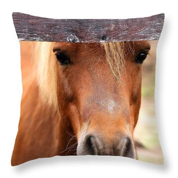 Peaking Pony Throw Pillow