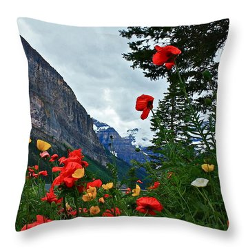 Throw Pillow featuring the photograph Peaks And Poppies by Linda Bianic
