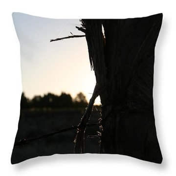 Throw Pillow featuring the photograph Pealing by David S Reynolds