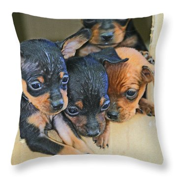 Peanuts Puppies 4 Of 5 Throw Pillow by Tom Janca