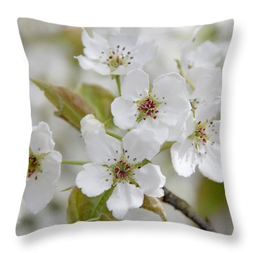 Pear Tree White Flower Blossoms Throw Pillow by Jennie Marie Schell