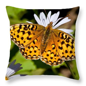 Throw Pillow featuring the photograph Pearl Border Fritillary Butterfly On An Aster Bloom by Jeff Goulden